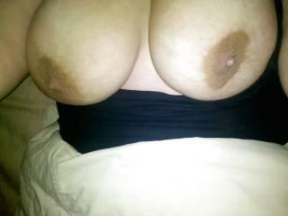 Nice big udders, great nipples too