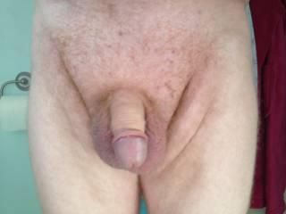 Anyone like my cock?