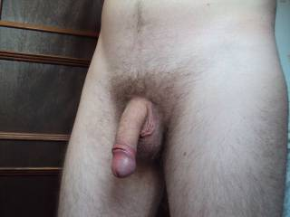 My dick and bush, do you like it?