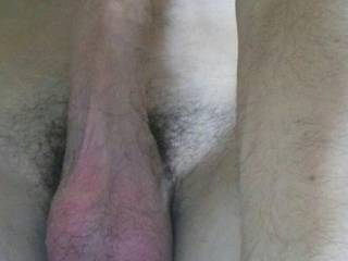 Nice big lickable,suckable balls, very nice big suckable cock