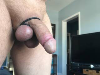 dick with cock ring