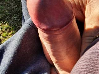 Exposing COCK head while camping