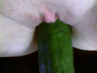 wow! that is a good sized cucumber....would love to see her take a bigger one.