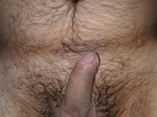 belly hairy