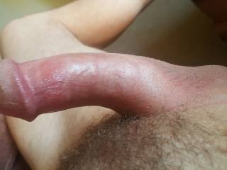 My lil thick hard dick who wants to get it soft for me?