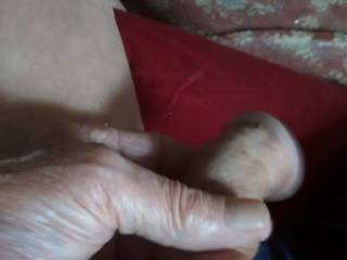 I was starting to look at member pictures and thought I would see what my cock was doing.