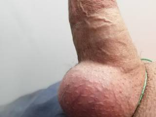 Side shot of my hard cock for you, hope you\'re enjoying it and thinking of sucking on my balls.