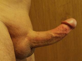 My erect cock ready for some action. What you do with it?