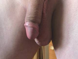 My freshly shaved dick