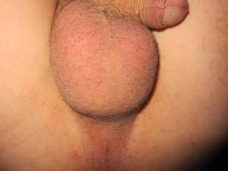 Nice balls. Lov to lick and suck on them
