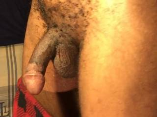My hanging dick.. please lift it with ur tongue