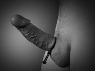 My big dick with cockring, like the vaines?