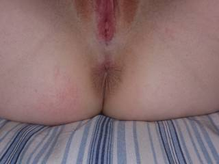 The wife's wet pussy and tight ass