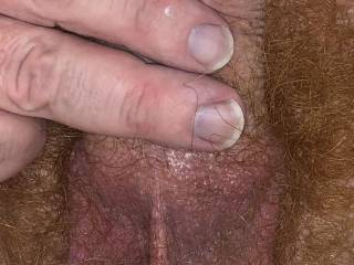 My soft cock all nice and warm just after a shower