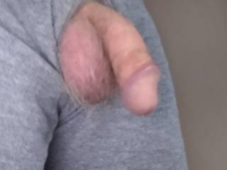 Felt llke walking around the property doing chores while exposing my dick and balls. It soon lead to total nakedness, a lot of sweating (it was 100°F outside) and a cold well water shower from the hose. Invigorating!  I need a shave...anyone interested