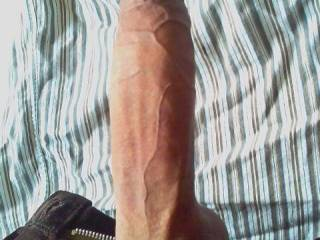 Mmm, what a big juicy cock! I'm not usually into men but your huge staff makes me real horny. It's a pity I can's send u pvt or I would give u my contact, your account seems to be locked.