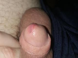 My dick super wet with precum