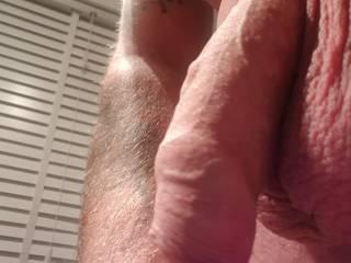 Soft cock selfie