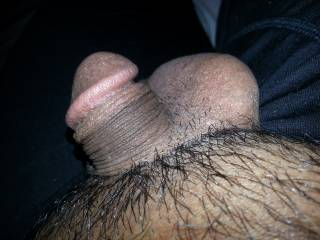My cock at it\'s most softest, smallest and limp state. Someone please get me HARD!!