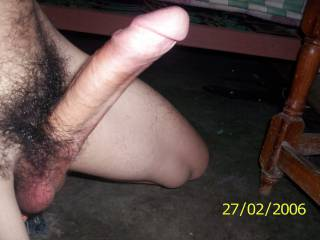 good strong cock meat for the ladies to suck, chew on, and fuck though much better shaved smooth for essential oral fun