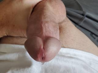 So horny and dripping presume, help me explode???