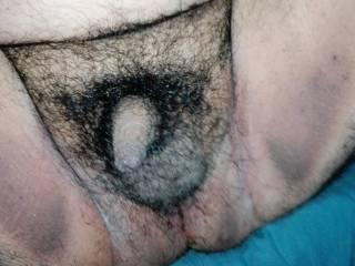 My Penis Hairy
