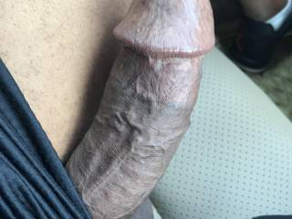 I think you know by now I can't go for a drive without letting my dick hang out