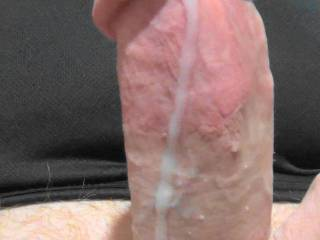 A little Christmas cumshot! Stroking my cock to Zoig cam chat. 2 dyas of cum pumping from my throbbing dick!