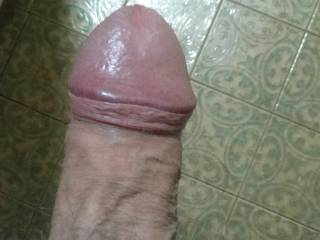 My cock tonight, any up for giving me some relief?