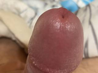 Talking to zoig members make me so hard and my precum is really sweet does anyone want some