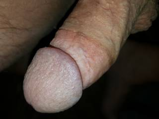 Rock hard thick cock