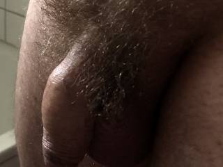 Would you like to suck off this little hairy dick?