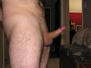 """Great pic... love seeing cocks """"at attention"""" ready for a little lick :-)"""