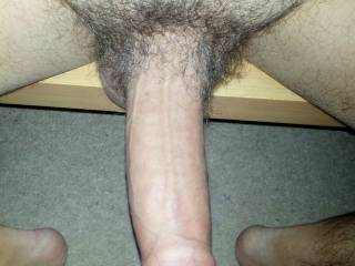 Morning wood... any light relief?
