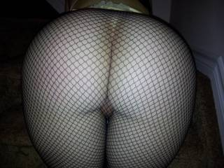 Modeling the new fishnets