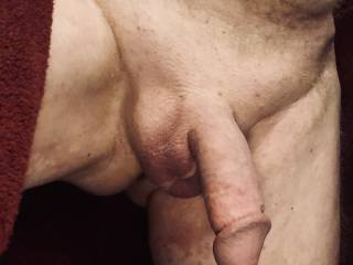 Just out of the shower, freshly shaved, cock still swollen.