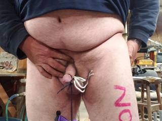 Balls tied up, shoe hanging from head of dick