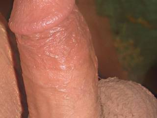 umm. yummy cock--i loved it shaved and stiff! you can have my bottom for your entertainment.