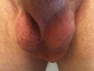 These balls look really full like you are ready to cum soon :-)  Natural Spoonman, I would shave them for you...