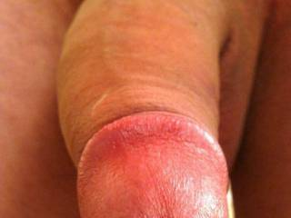 Your cockhead is so beautiful to look at! Your lady friends that enjoy oral sex, must love to take it into their mouths! It has to feel wonderful this way!  HD
