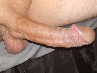 Tell me what you think of my dick