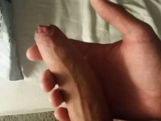 Being horny going to bed, getting hard. Like that thick vein on the top. Missing someone on their hands and knees in bed, sucking this beauty
