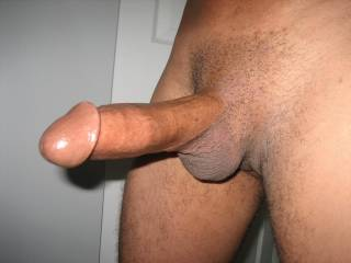 Beautiful thick cock and awesome thick head!