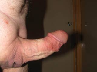 Cock always shaved and always looking for wet pussies.