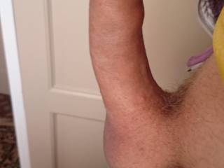 my erect uncut cock pointing vertical