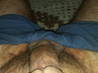 My cock in the am limp just out of my pants he is hungry