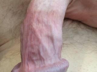 Close-up of my dick