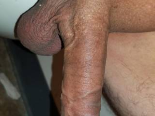 Hanging cock and balls