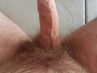 Who likes a hairy dick?