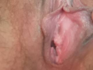 Asked Kiki to show me her pink pussy hole this morning. Can't wait to slide my cock in her tonight! Have you ever scissored and smashed your pussy against another pussy? Fuck I would love to watch Kiki do that